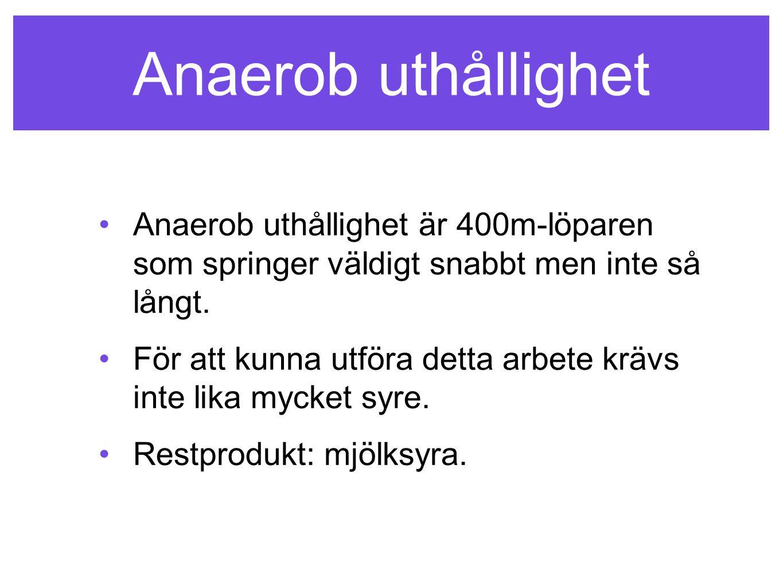 Anaerob uthållighet Anaerob uthållighet är 400m-löparen som springer väldigt snabbt men inte så långt.