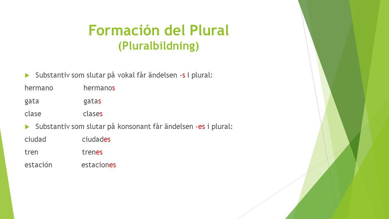 Formación del Plural (Pluralbildning)