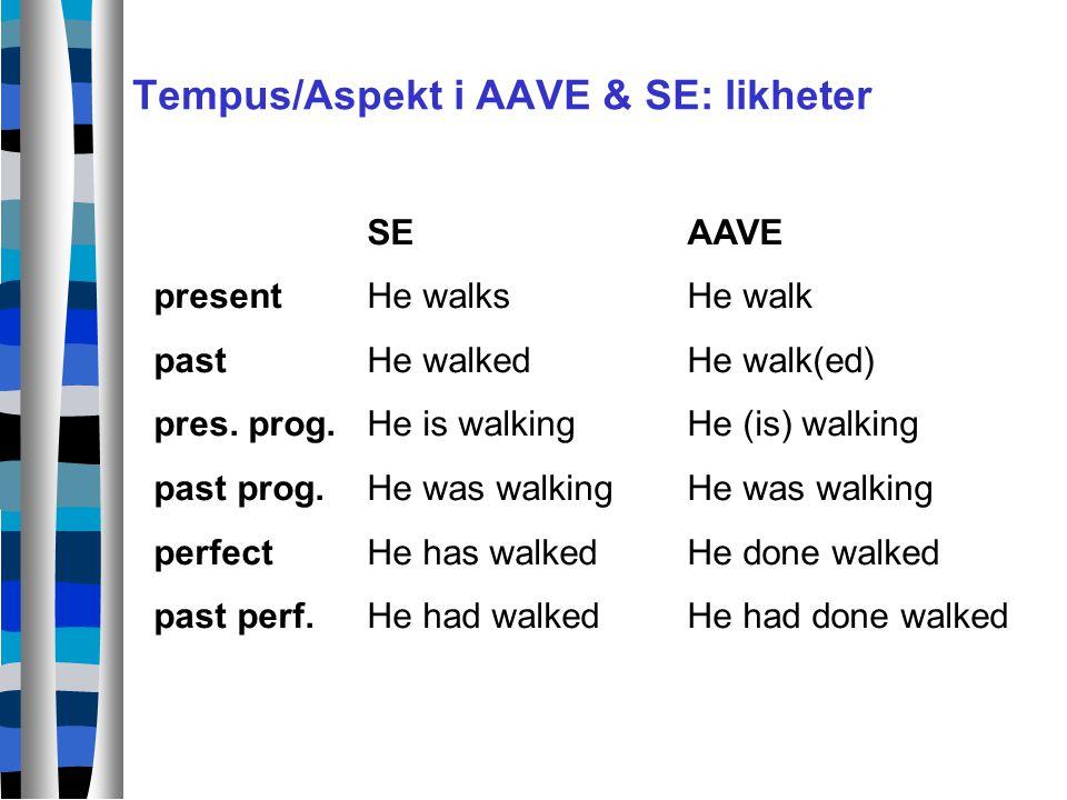 Tempus/Aspekt i AAVE & SE: likheter