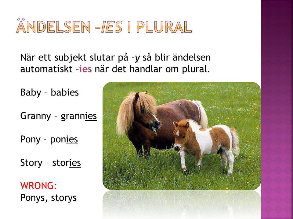 Ändelsen –ies i plural När ett subjekt slutar på –y så blir ändelsen automatiskt –ies när det handlar om plural.