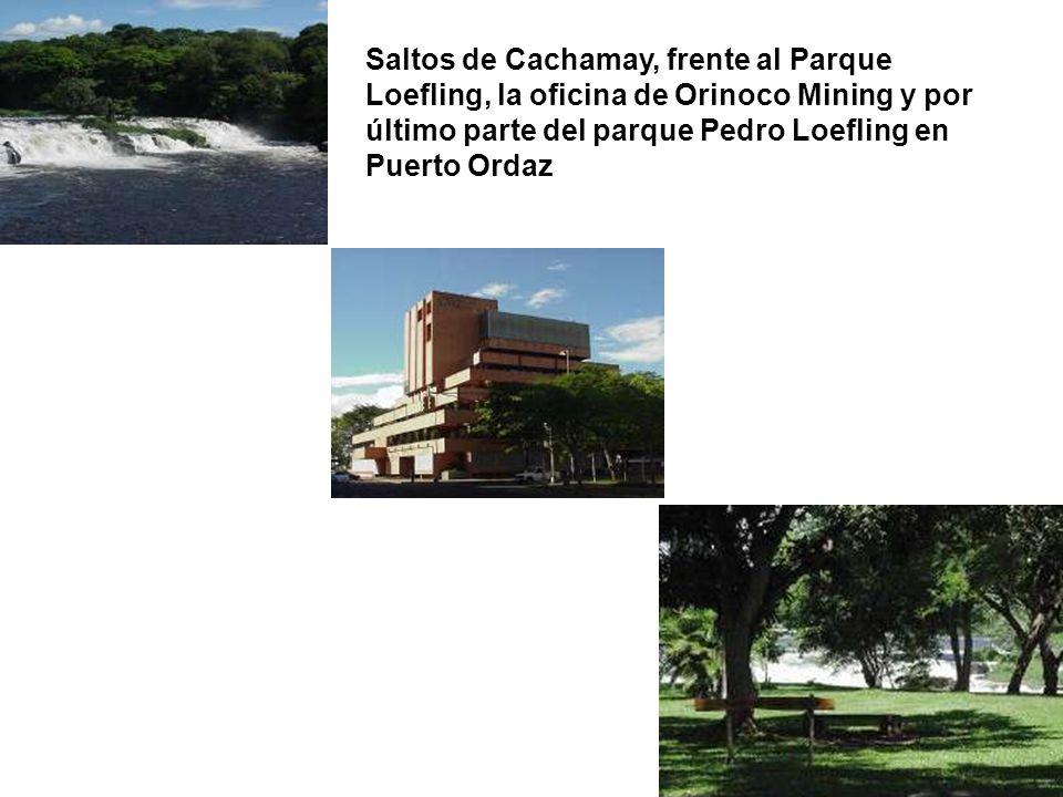 Saltos de Cachamay, frente al Parque Loefling, la oficina de Orinoco Mining y por último parte del parque Pedro Loefling en Puerto Ordaz