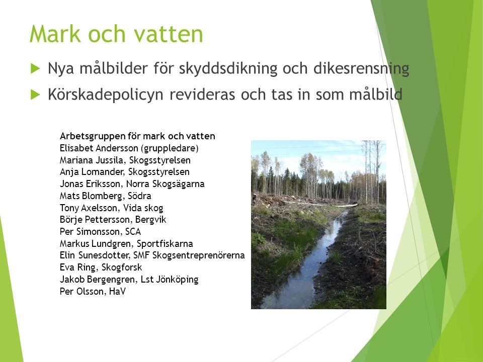 Mark och vatten Nya målbilder för skyddsdikning och dikesrensning