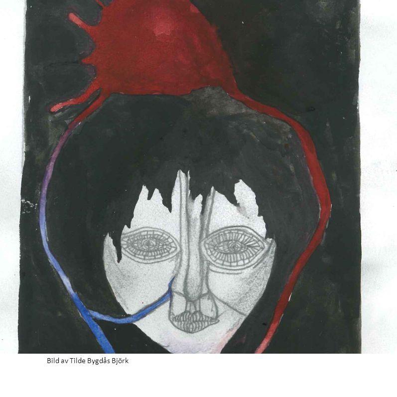 Bild av Tilde Bygdås Björk