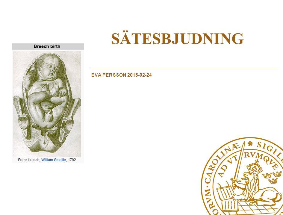 SÄTESBJUDNING eVA PERSSON 2015-02-24