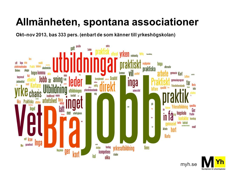 Allmänheten, spontana associationer Okt–nov 2013, bas 333 pers