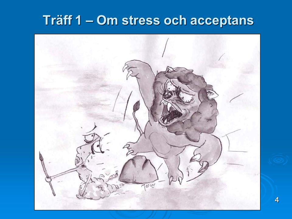 Träff 1 – Om stress och acceptans