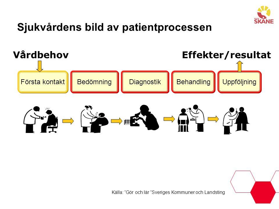 Sjukvårdens bild av patientprocessen
