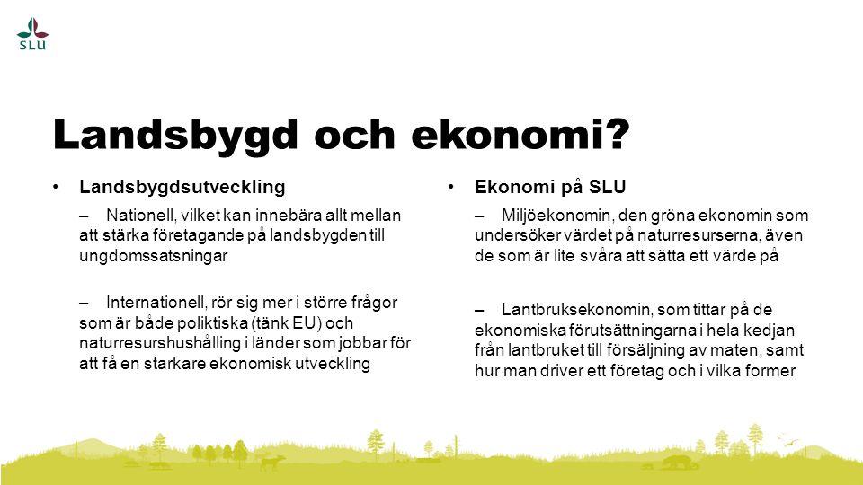 Landsbygd och ekonomi Landsbygdsutveckling Ekonomi på SLU