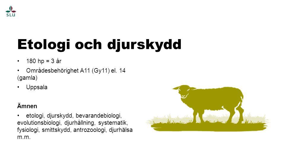 Etologi och djurskydd 180 hp = 3 år
