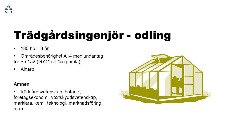 Trädgårdsingenjör - odling