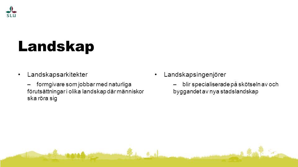 Landskap Landskapsarkitekter Landskapsingenjörer