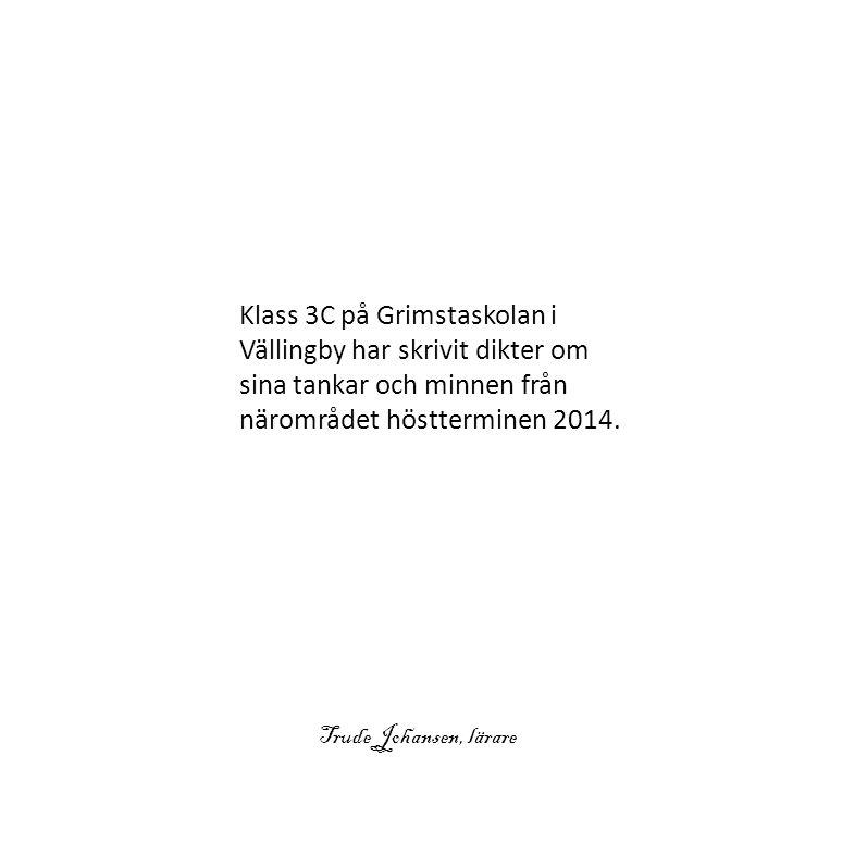 Klass 3C på Grimstaskolan i Vällingby har skrivit dikter om sina tankar och minnen från närområdet höstterminen 2014.