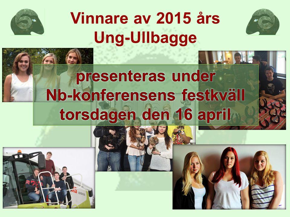 Vinnare av 2015 års Ung-Ullbagge