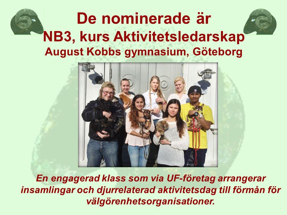 De nominerade är NB3, kurs Aktivitetsledarskap August Kobbs gymnasium, Göteborg