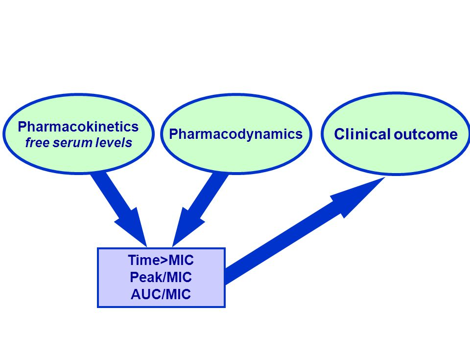 Clinical outcome Pharmacokinetics Pharmacodynamics Time>MIC