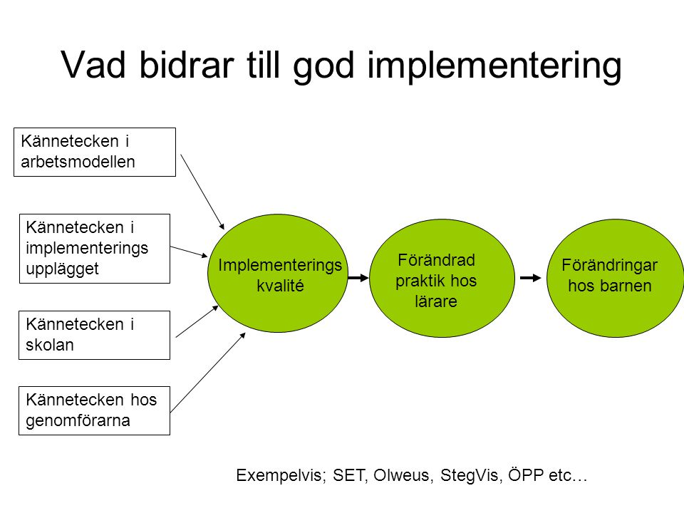 Vad bidrar till god implementering