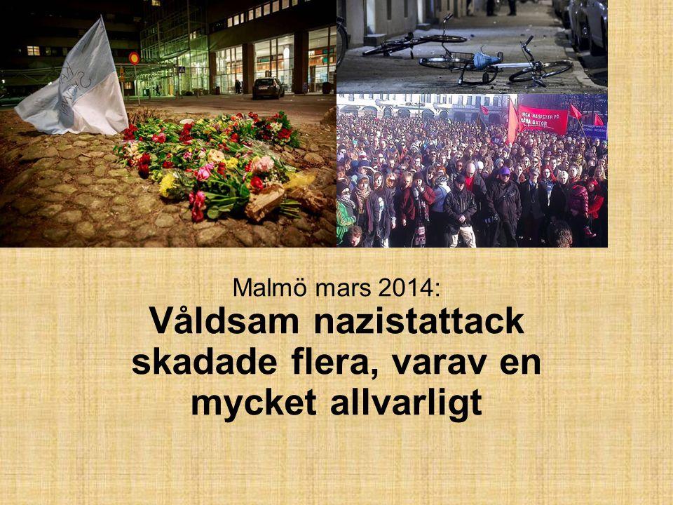 Malmö mars 2014: Våldsam nazistattack skadade flera, varav en mycket allvarligt
