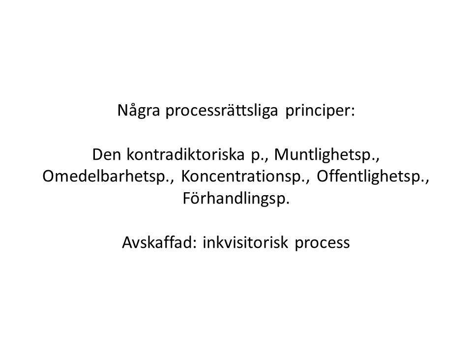 Några processrättsliga principer: Den kontradiktoriska p
