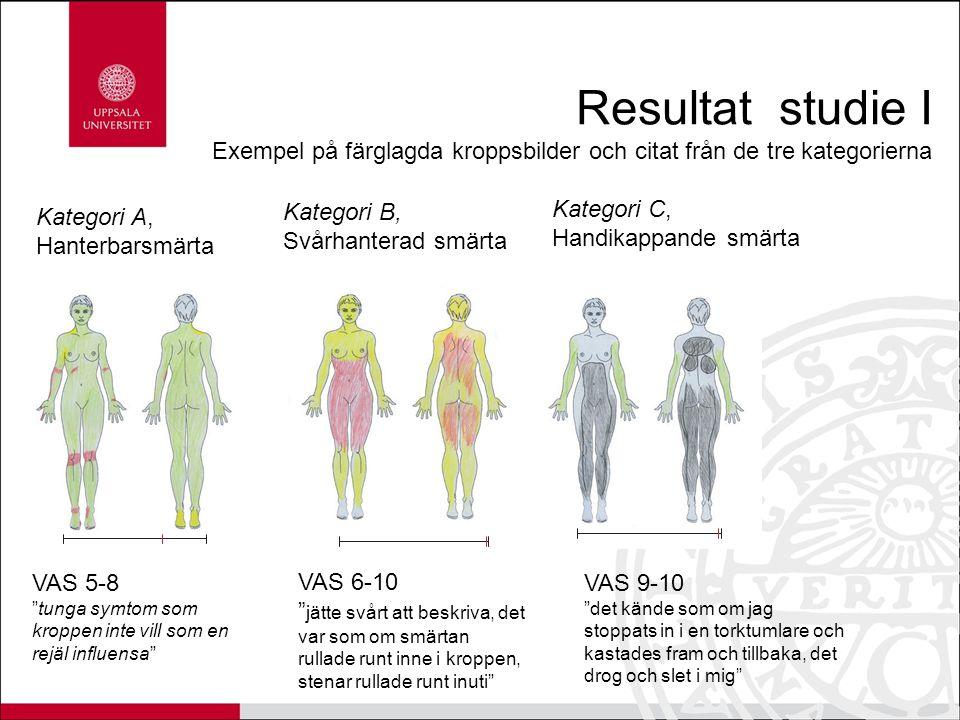 Resultat studie I Exempel på färglagda kroppsbilder och citat från de tre kategorierna