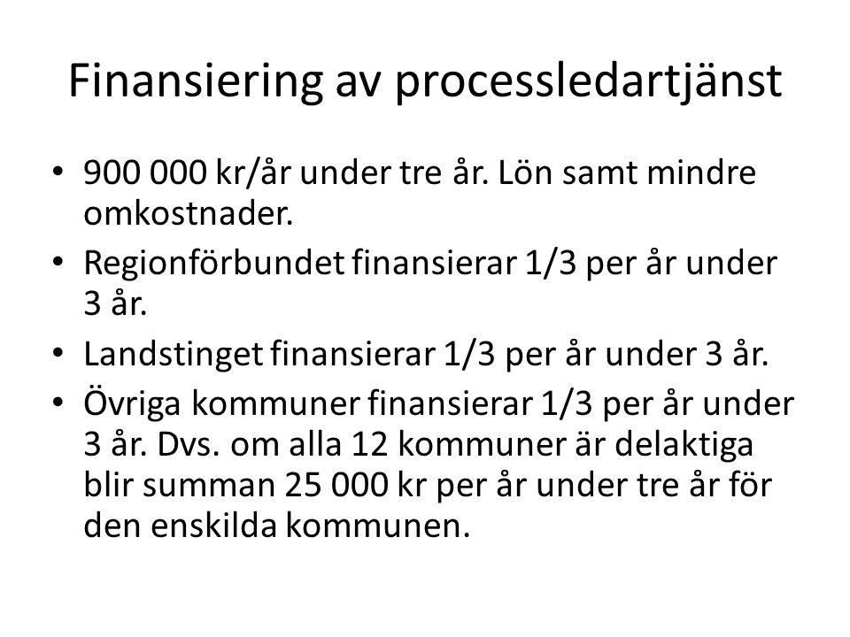 Finansiering av processledartjänst