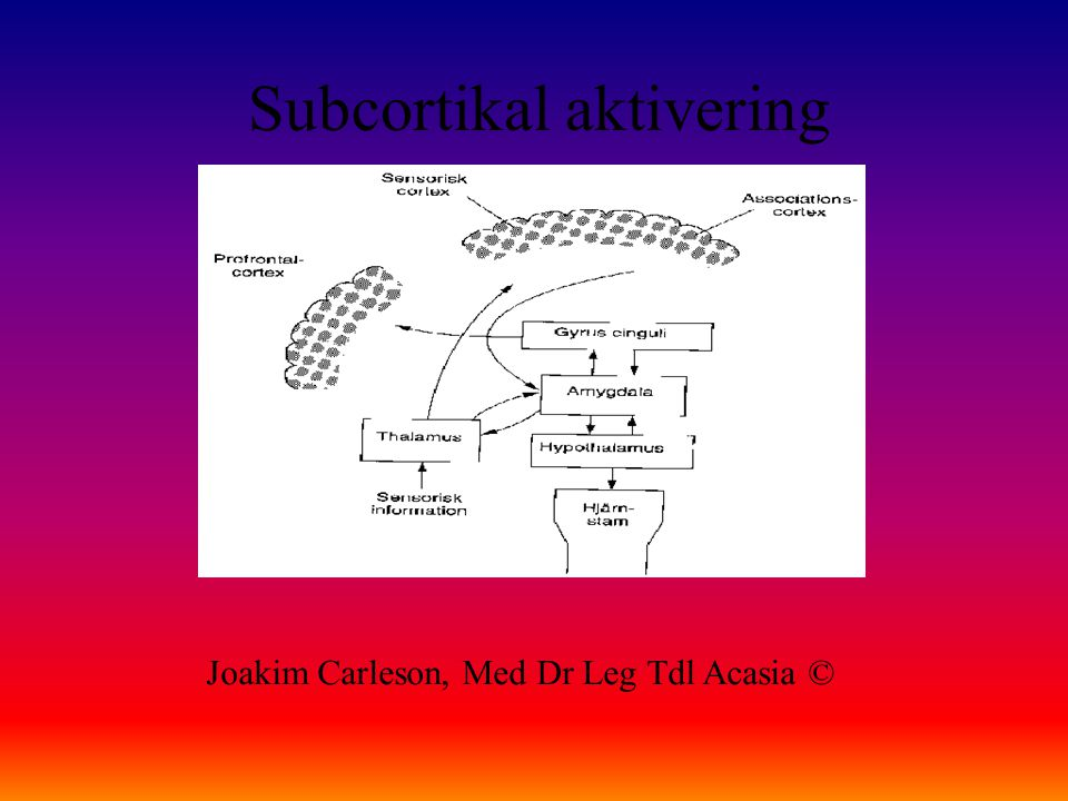 Subcortikal aktivering