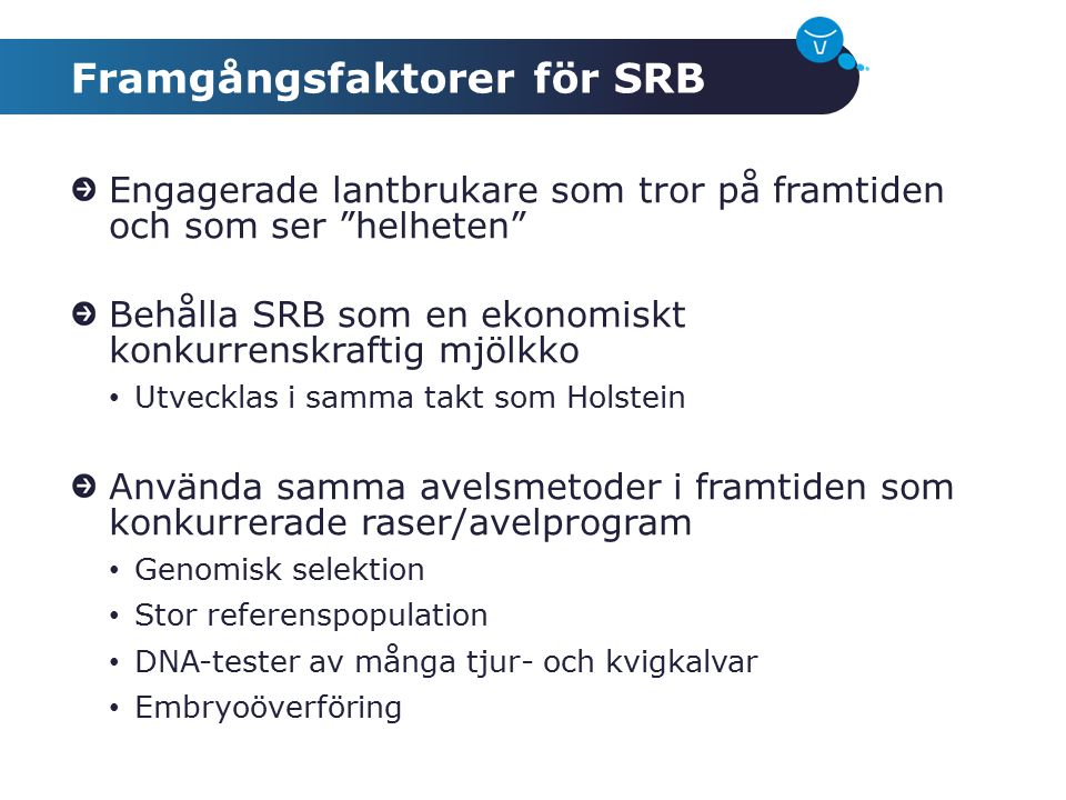 Framgångsfaktorer för SRB