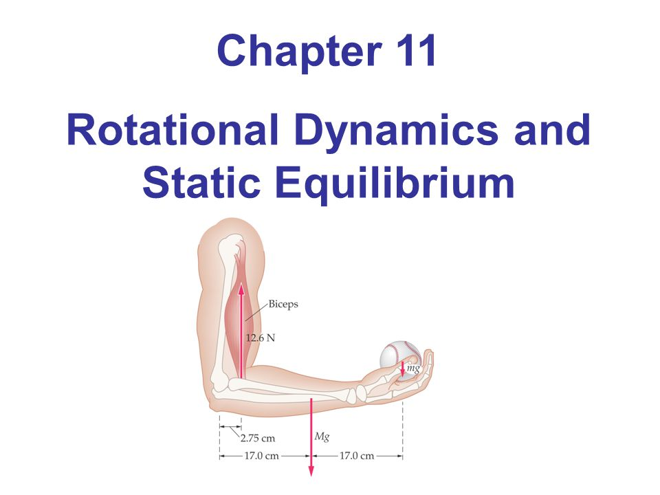 Rotational Dynamics and Static Equilibrium