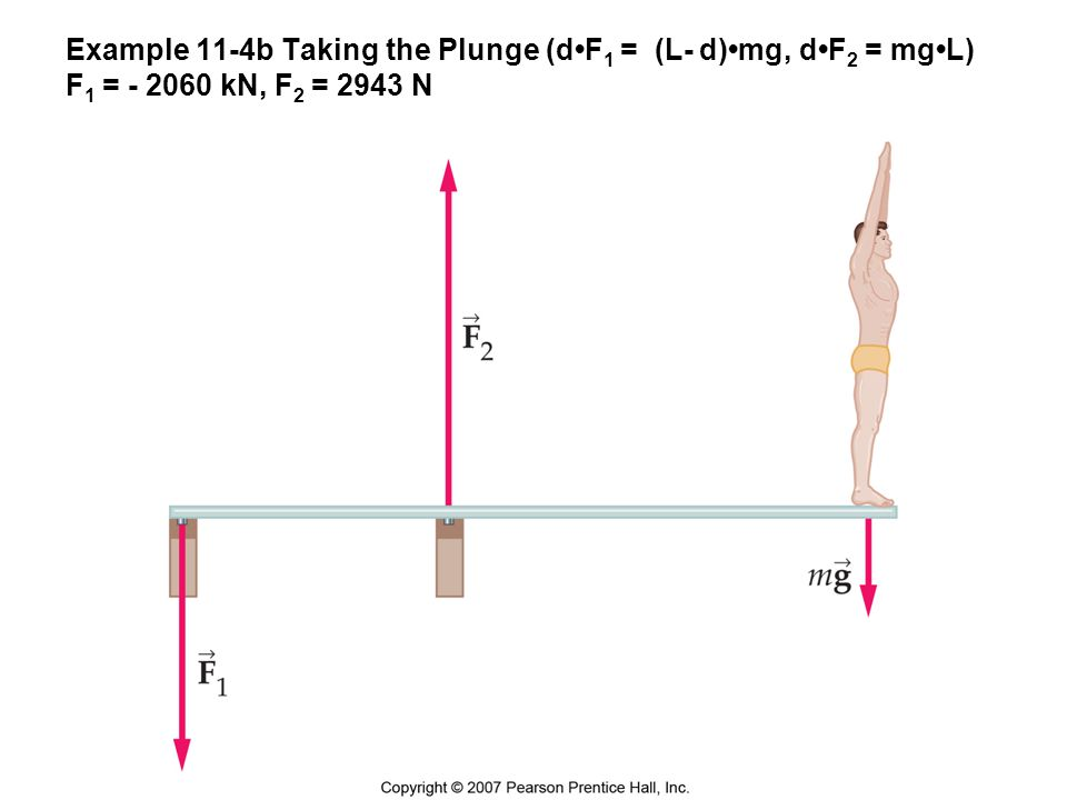 Example 11-4b Taking the Plunge (d•F1 = (L- d)•mg, d•F2 = mg•L) F1 = - 2060 kN, F2 = 2943 N