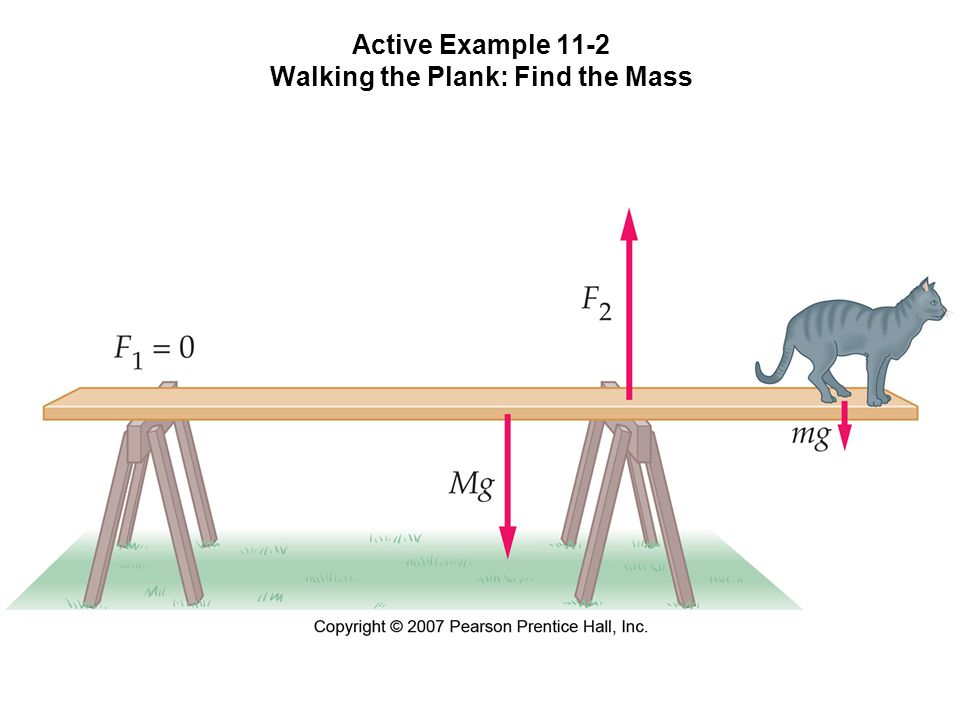 Active Example 11-2 Walking the Plank: Find the Mass