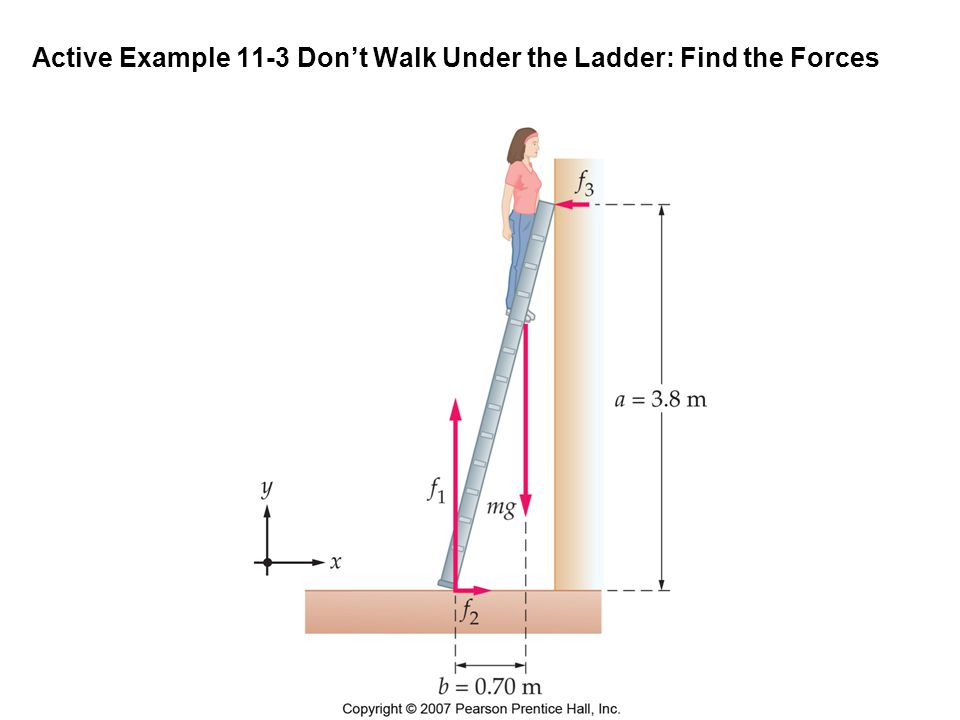 Active Example 11-3 Don't Walk Under the Ladder: Find the Forces