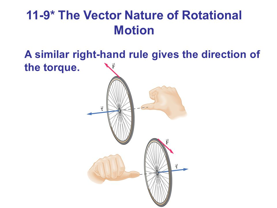 11-9* The Vector Nature of Rotational Motion
