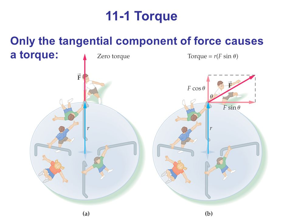 11-1 Torque Only the tangential component of force causes a torque: