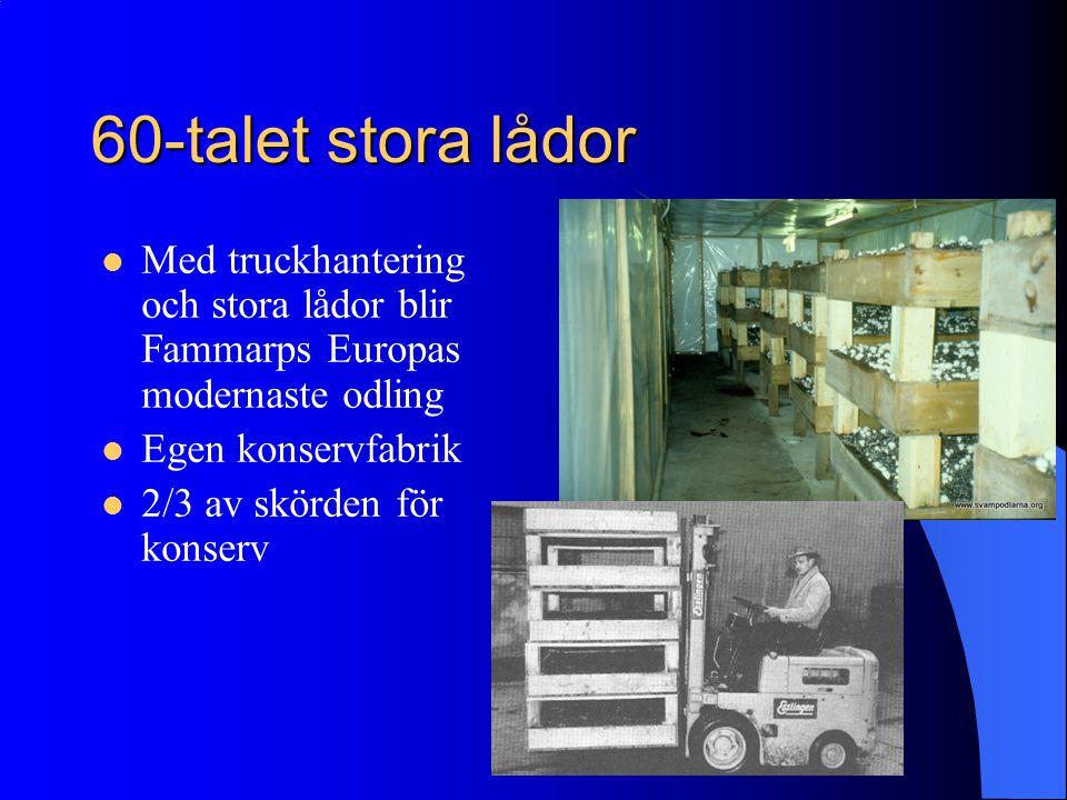 60-talet stora lådor Med truckhantering och stora lådor blir Fammarps Europas modernaste odling. Egen konservfabrik.