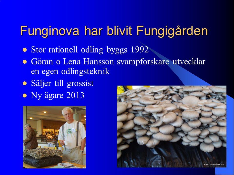 Funginova har blivit Fungigården
