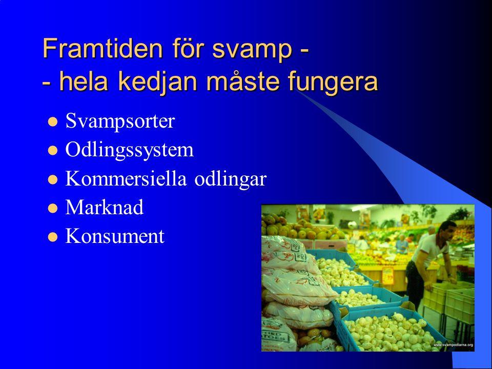 Framtiden för svamp - - hela kedjan måste fungera