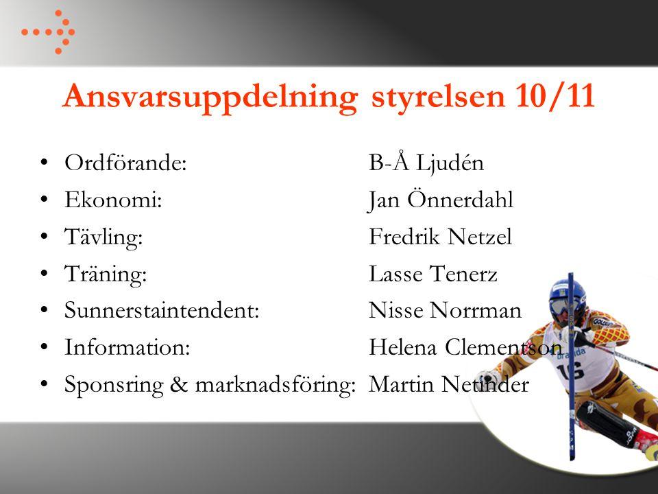 Ansvarsuppdelning styrelsen 10/11