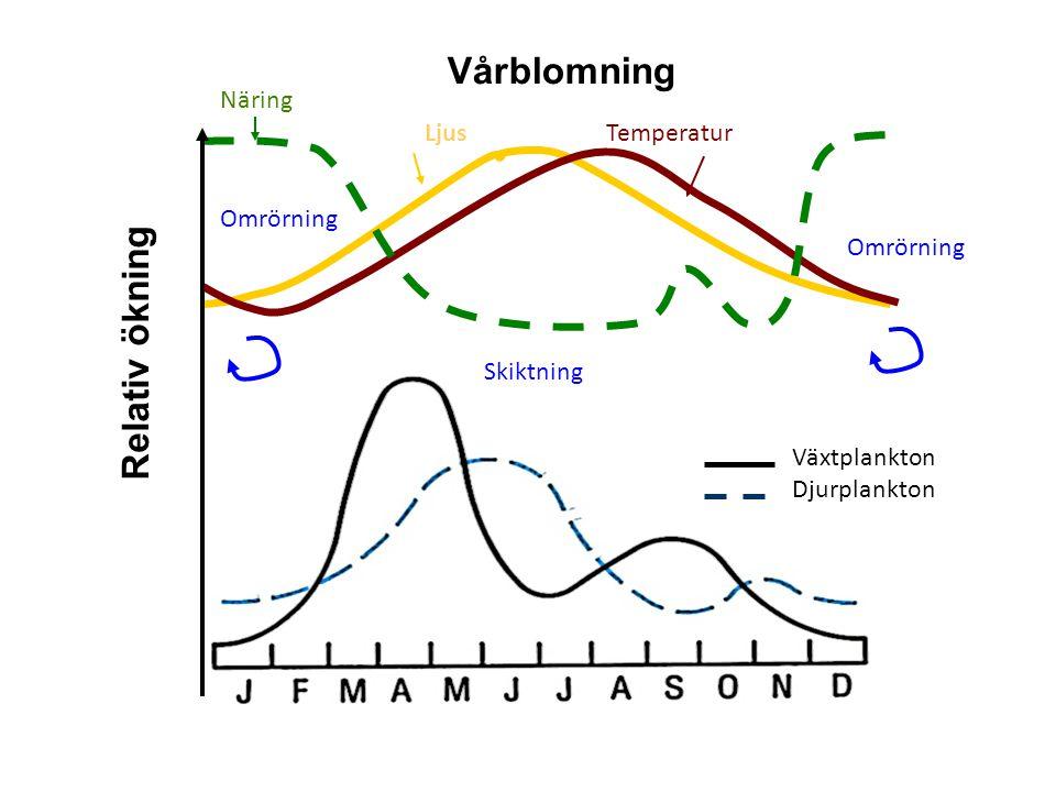 Vårblomning Relativ ökning Näring Ljus Temperatur Omrörning Omrörning