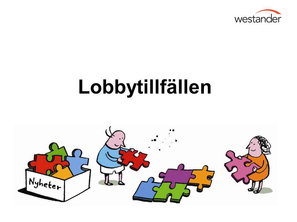 Lobbytillfällen Detta leder mig in på vilka lobbytillfällen som finns i olika stadier av en beslutsprocess på kommunal nivå.