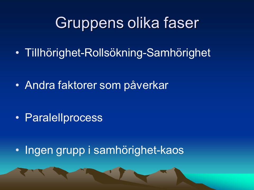 Gruppens olika faser Tillhörighet-Rollsökning-Samhörighet