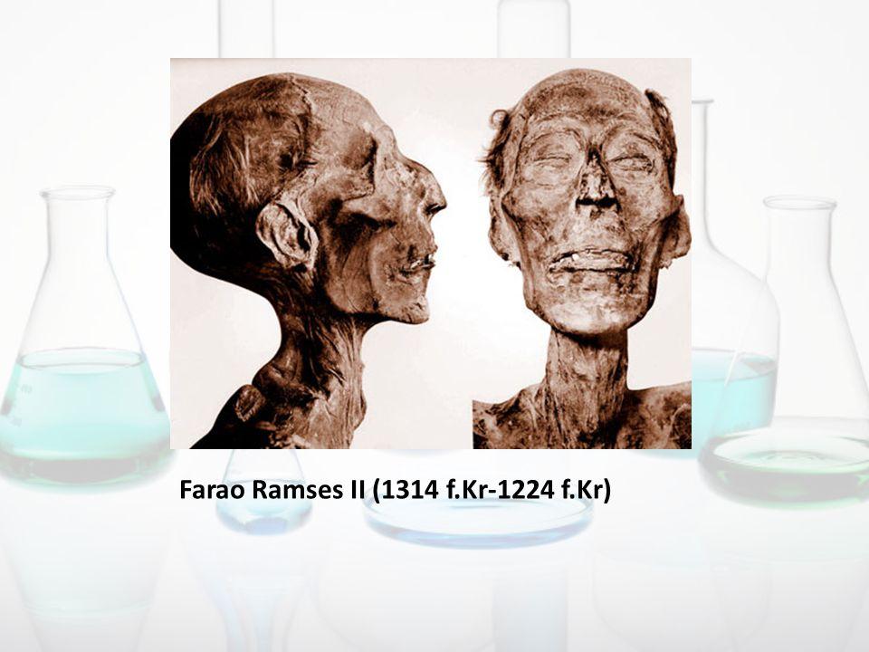 Farao Ramses II (1314 f.Kr-1224 f.Kr)