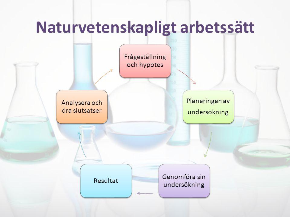 Naturvetenskapligt arbetssätt