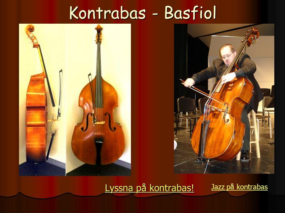 Kontrabas - Basfiol Lyssna på kontrabas! Jazz på kontrabas