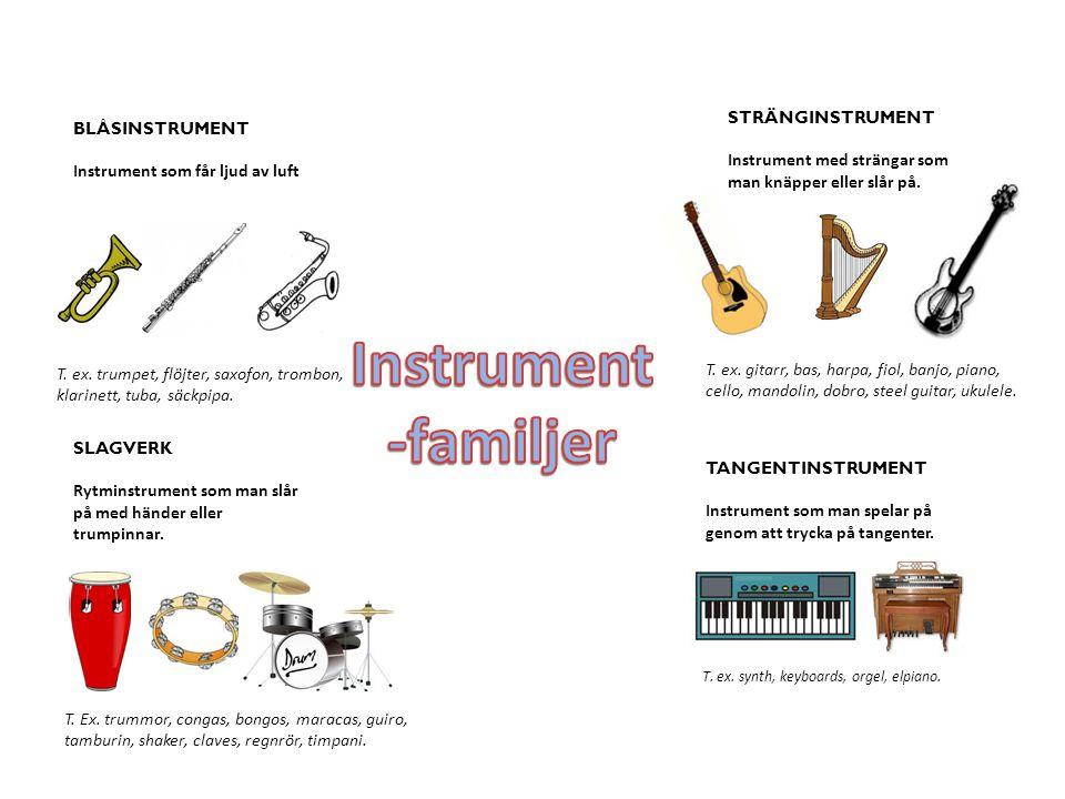 Instrument -familjer STRÄNGINSTRUMENT BLÅSINSTRUMENT