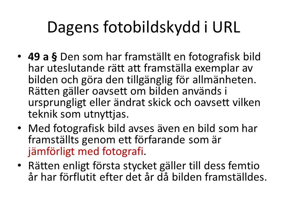 Dagens fotobildskydd i URL