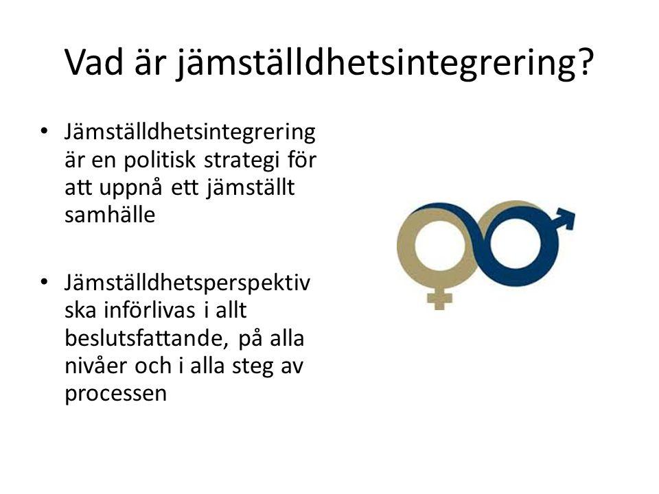 Vad är jämställdhetsintegrering
