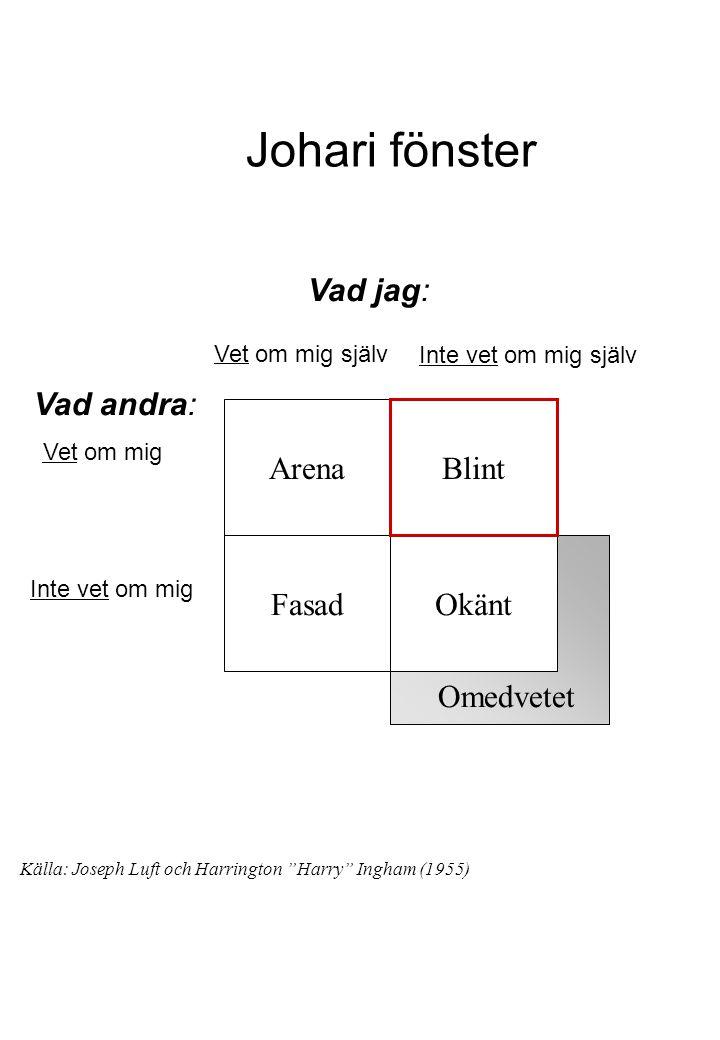 Johari fönster Vad jag: Vad andra: Arena Blint Fasad Okänt Omedvetet