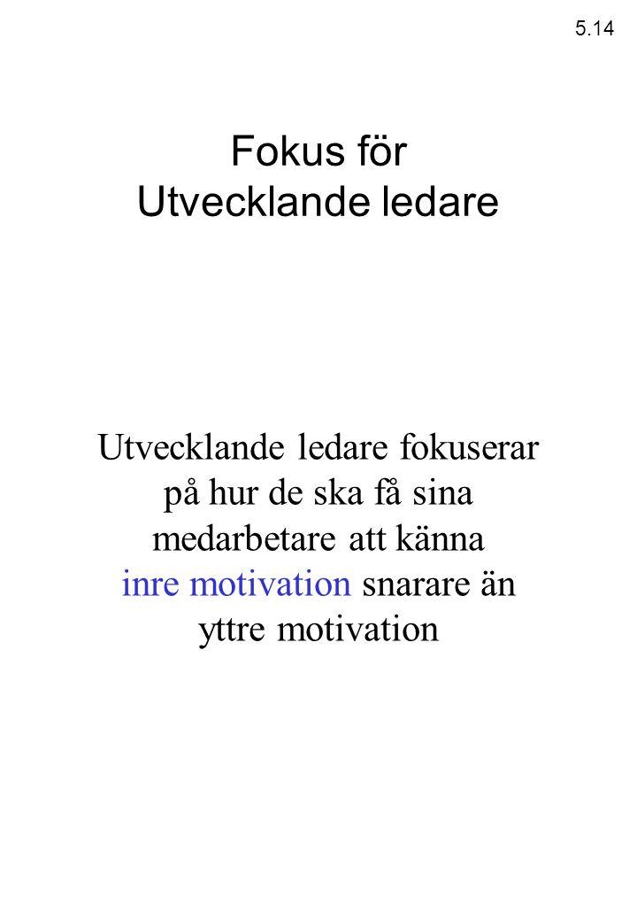 inre motivation snarare än