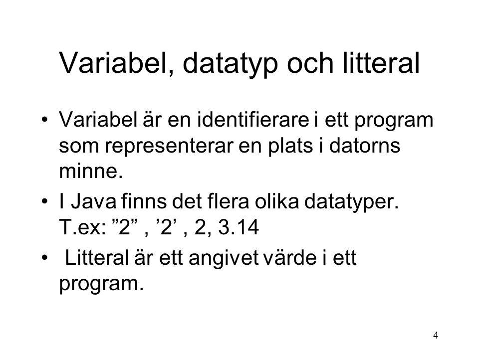 Variabel, datatyp och litteral