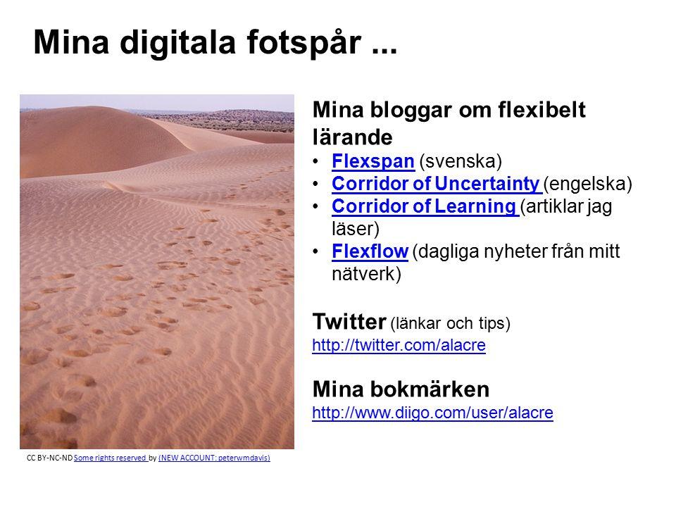 Mina digitala fotspår ... Mina bloggar om flexibelt lärande