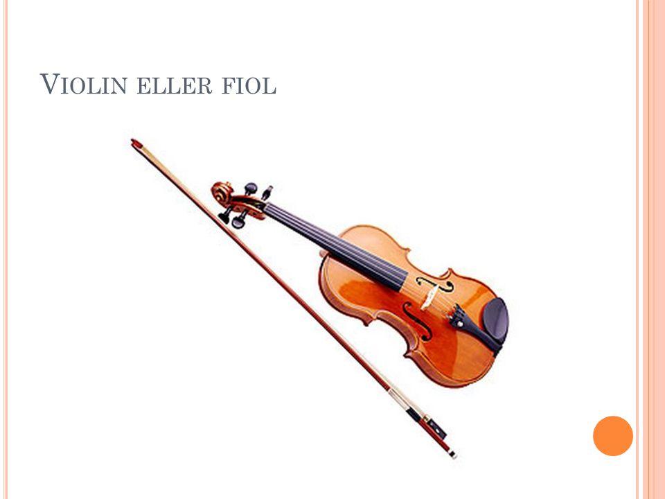 Violin eller fiol